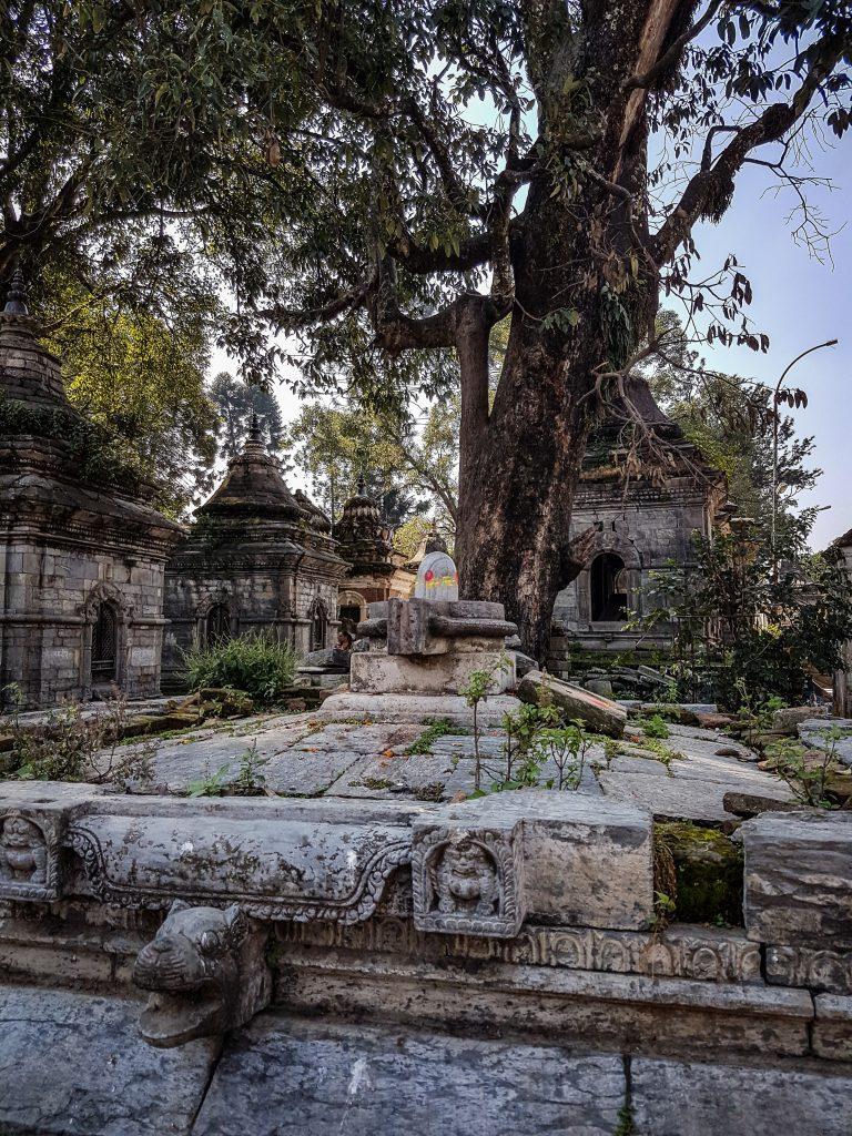 Nepal - Pashupatinath